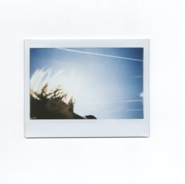 erika_257-Rmariaferresamat-lomography-polaroid